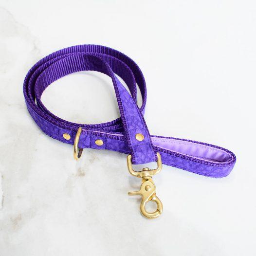 fioletowa smycz dla psa